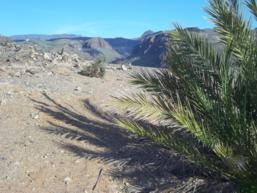 Diario di viaggio delle Isole Canarie - Gran Canaria e Tenerife