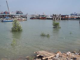 Foto di Port Klang