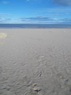 Foto di Rimini (spiaggia e mare)