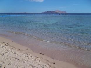 Diario di viaggio di Sharm El Sheikh e dintorni
