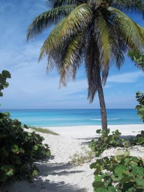 Foto di Varadero (spiaggia)