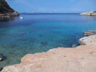 Foto di Ibiza (Cala Salada)