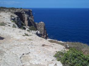 Foto di Formentera (area del Faro de la Mola)