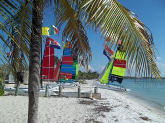 Foto di Miami (Virginia Key)