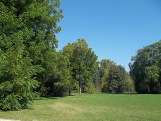Foto di Racconigi (parco del Castello Reale)