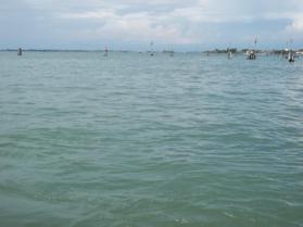 Foto della Laguna di Venezia