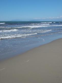 Foto di Viareggio (spiaggia)