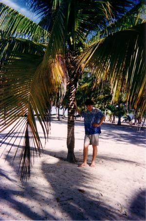 Foto di Playa Santa Lucia (all'ombra di una palma)