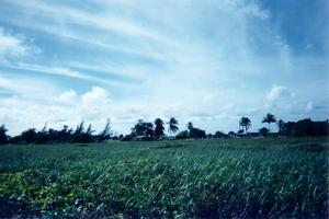 Foto di Playa Santa Lucia (panorama dell'entroterra)