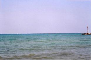 Foto di San Vincenzo (LI) - veduta dalla spiaggia
