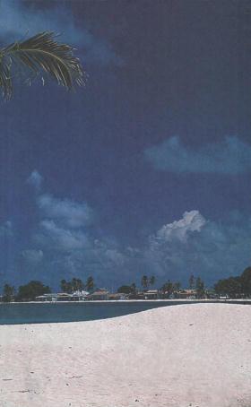 Immagine di Playa Los Cocos -Coco Beach- (veduta da riva)
