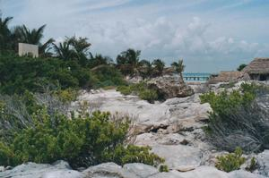 Foto di Isla Mujeres (punta nord)