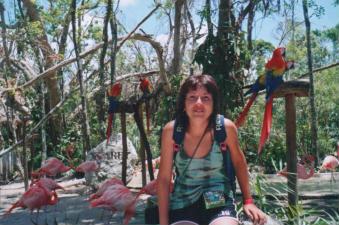 Foto di Xcaret (pappagalli e fenicotteri)