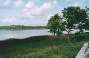 Foto di Coba (lago dei coccodrilli)