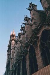 Foto di Parigi (Notre Dame)