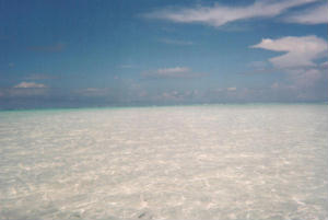 Foto di Zanzibar (Kiwengwa)