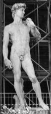 Foto di Firenze - copia del David di Michelangelo