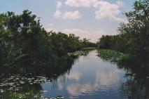 Foto delle Everglades