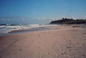 Foto di Praia do Francês