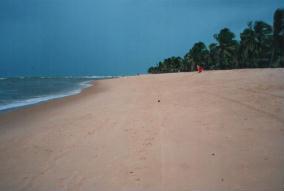 Foto di Praia do Gunga
