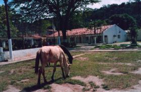 Foto di Barra de São Miguel