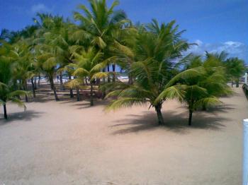 Foto di Praia Pratagy