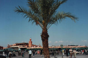 Marocco: diario di Marrakech