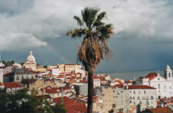 Guarda le foto di Lisbona
