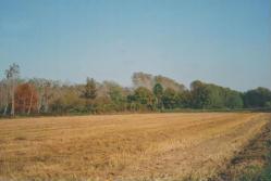 Descrizione e foto della provincia di Pavia (dove abito)