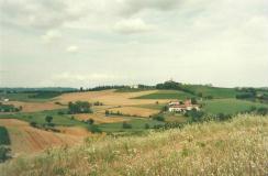 Foto del Monferrato (AT)
