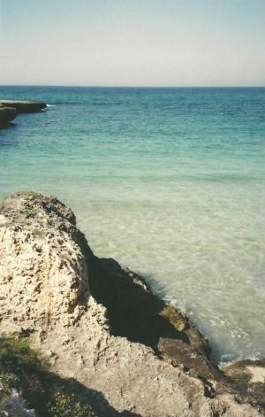 Foto di Marina di Ostuni (BR) - veduta del mare