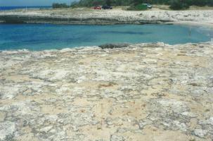 Foto di Marina di Ostuni (BR) - rive del mare