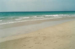 Foto di Fuerteventura