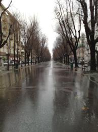 Foto di Vercelli (Viale Garibaldi)